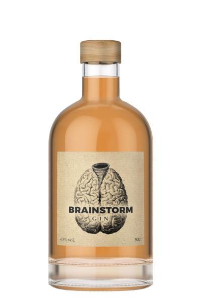 Brainstorm Gin - 0,5L 40% vol