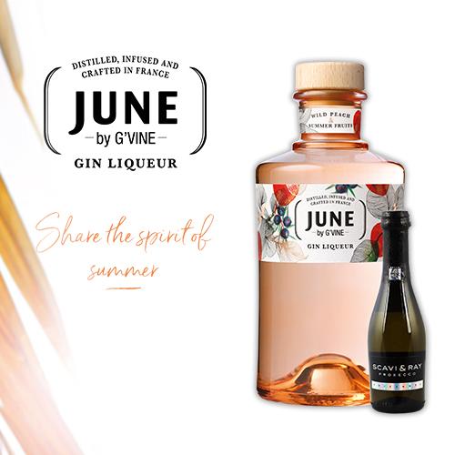 June Gin Set