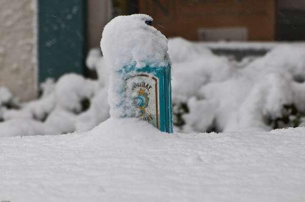 Conalco-Sapphire-Gin-Schnee