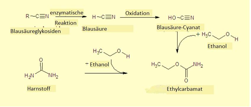 Ethylcarbamat